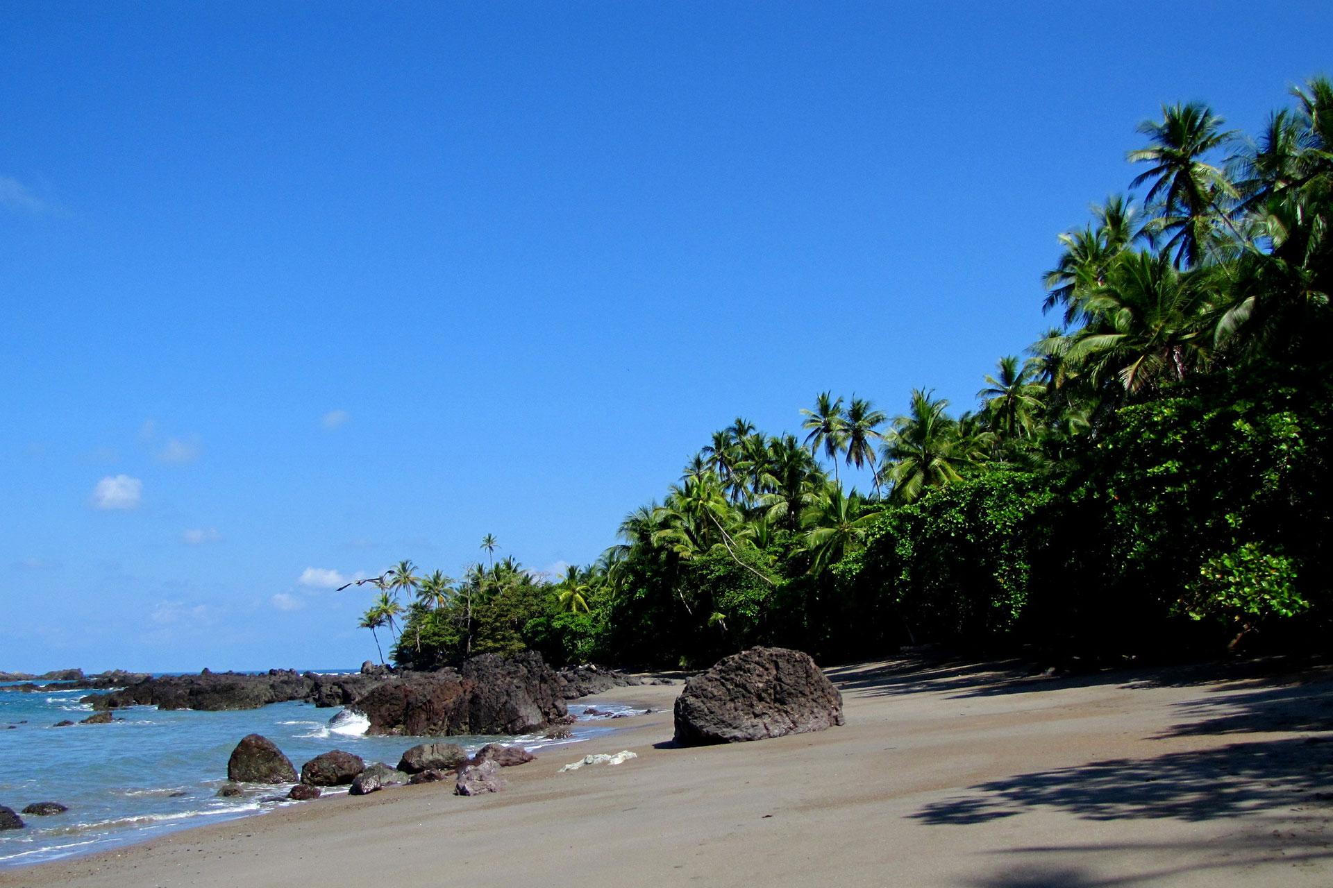 Photography, Tortuguero & Corcovado National Park Costa Rica Green Adventures Tour