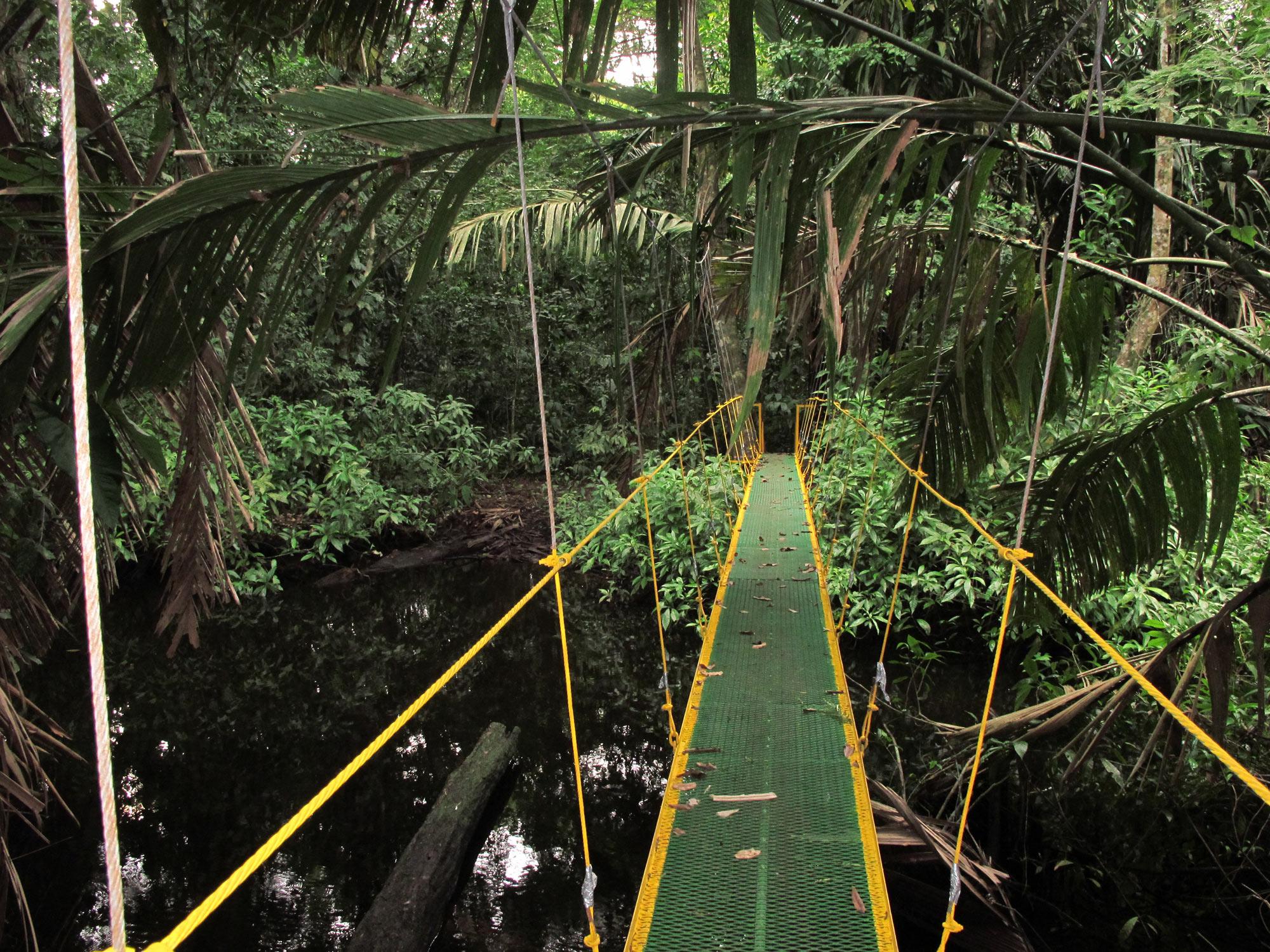 puentes colgantes costa rica